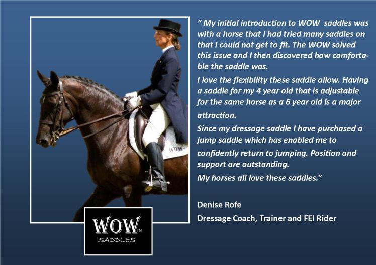 Wow Saddles Review 2